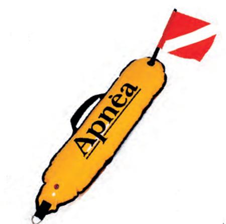 Slika za kategorije  Tečaj APNEA